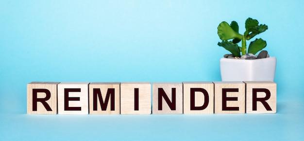 Het woord herinnering staat op houten blokjes naast een bloem in een pot op een lichtblauwe muur