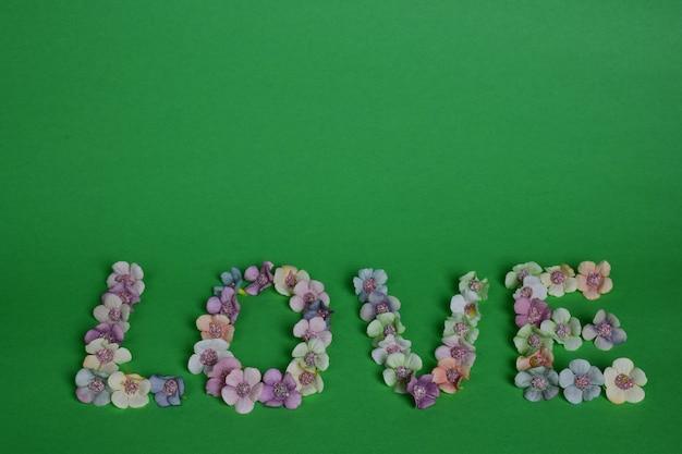 Het woord liefde is bekleed met letters op een schone groene achtergrond met kleurrijke bloemen aan de onderkant van het frame. hierboven is plaats voor tekst