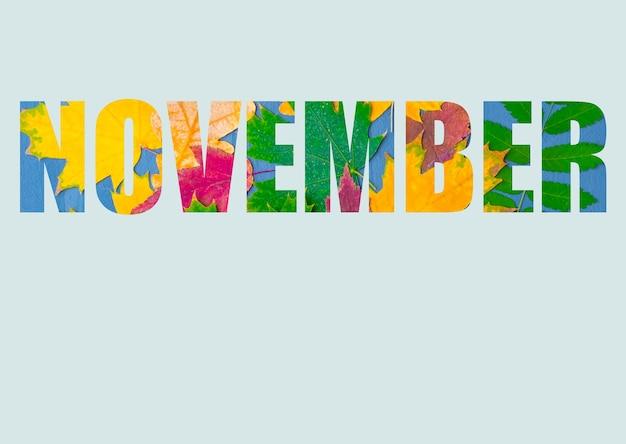 Het woord november bestaat uit heldere, kleurrijke herfstbladeren van verschillende planten, geïsoleerd op een pastelblauwe achtergrond. herfstmaand november. heldere herfstkalender
