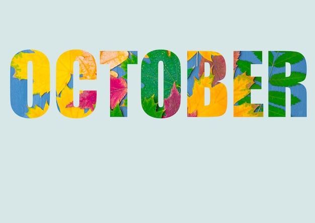 Het woord oktober, samengesteld uit heldere, kleurrijke herfstbladeren van verschillende planten, geïsoleerd op een pastelblauwe achtergrond. herfstmaand oktober. heldere herfstkalender