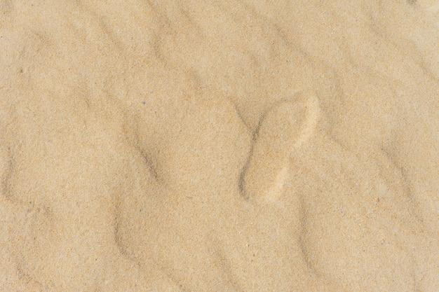 Het zandtextuur van het strand die op wit wordt geïsoleerd