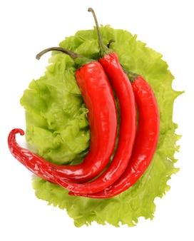 Hete chili pepers