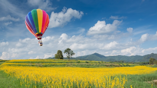 Hete luchtballon over geel bloemgebied