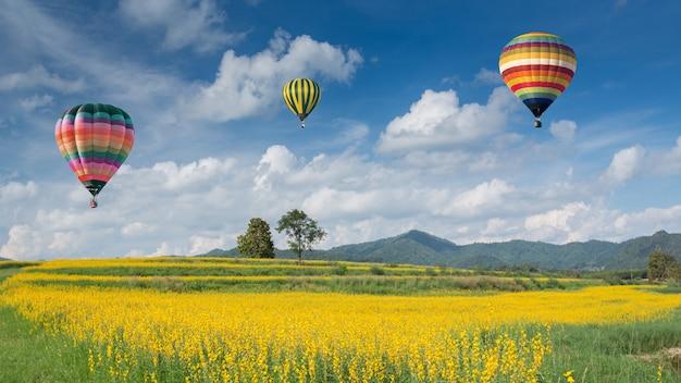 Hete luchtballon over gele bloemvelden tegen blauwe hemel