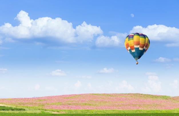 Hete luchtballon over roze kosmosgebieden met blauwe hemel
