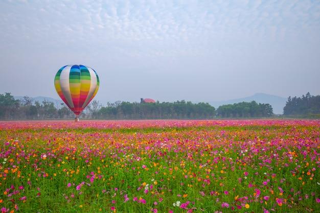 Heteluchtballonnen vliegen over flower veld met zonsopgang in chiang rai province, thailand