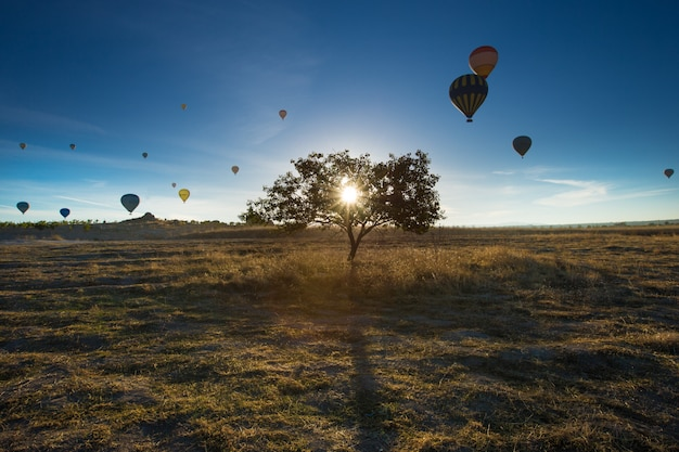 Heteluchtballonnen vliegen over spectaculaire cappadocië