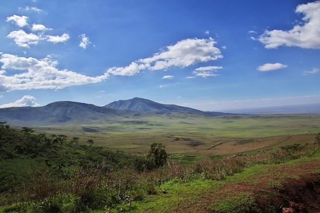 Heuvels en savanne op safari in kenia en tanzania, afrika