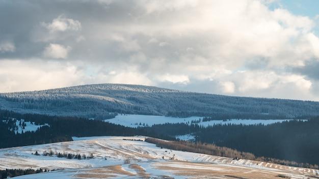 Heuvels met weilanden en bos bedekt met sneeuw
