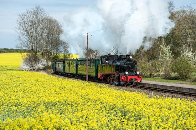 Historische trein in het voorjaar