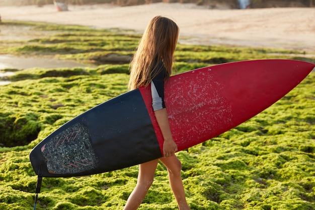 Hobby- en sportconcept. actieve vrouwelijke surfer draagt een surfplank, loopt aan de kust tijdens de zomervakantie, wil oceaangolven raken, heeft recreatie op een paradijselijke plek, poseert alleen. horizontaal schot