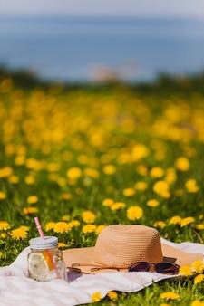 Hoed en zonnebril op het gras