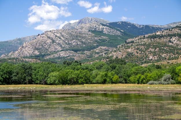 Hoge bergen en groeiende vegetatie op het platteland van madrid in spanje