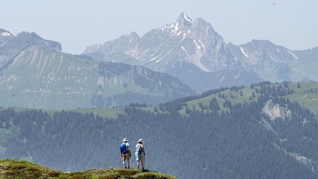 Hoge bergen en heuvels bedekt met bossen