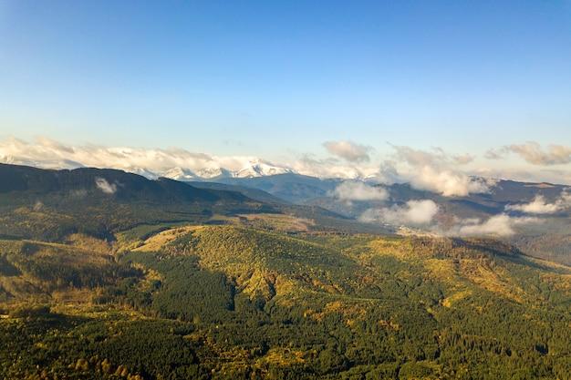 Hoge bergtoppen bedekt met herfstsparrenbos en hoge besneeuwde toppen.