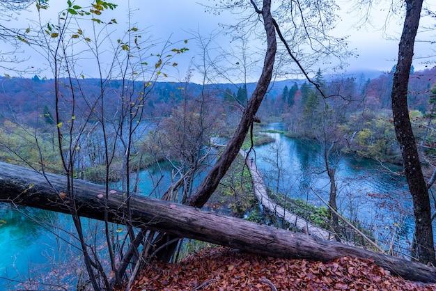 Hoge die hoek van een houten weg is ontsproten in het nationale park van plitvicemeren in kroatië