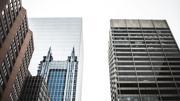 Hoge gebouwen overdag