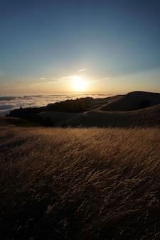 Hoge heuvels bedekt met droog gras met de zichtbare skyline op mt. tam in marin, californië