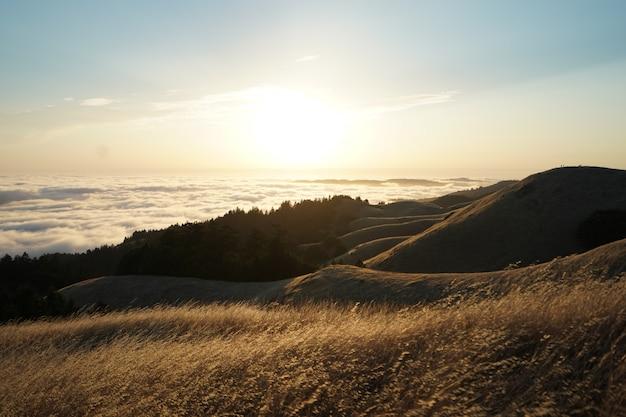 Hoge heuvels bedekt met droog gras op een zonnige dag met een zichtbare skyline op mt. tam in marin, californië