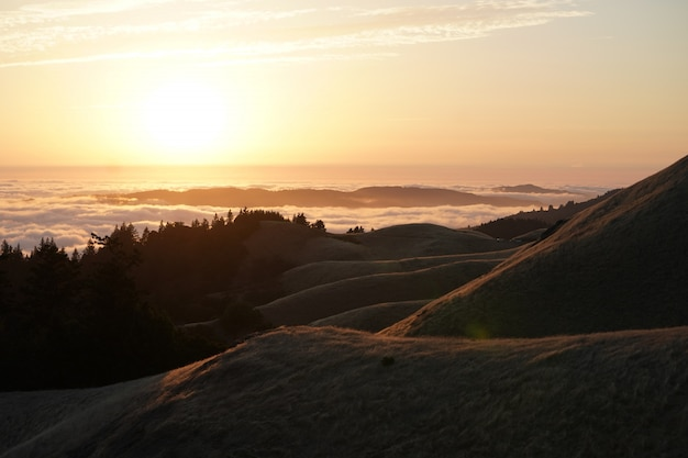 Hoge heuvels met bos en een zichtbare skyline bij zonsondergang op mt. tam in marin, californië
