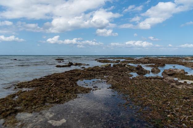 Hoge hoek die van de kalme oceaankust onder de bewolkte hemel is ontsproten