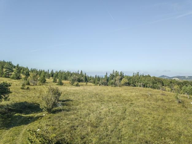 Hoge hoek die van een berg met bomen is ontsproten die onder de blauwe hemel in slovenië glanzen