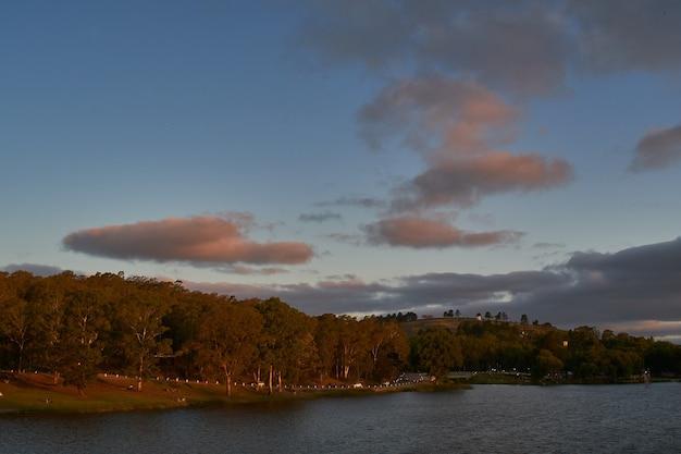 Hoge hoek die van een bos dichtbij het meer met een bewolkte hemel is ontsproten