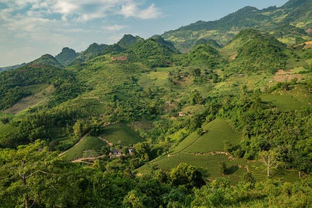 Hoge hoek die van een landschap met groene bomen en bergen onder de bewolkte hemel is ontsproten