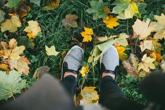 Hoge hoek die van een persoon is ontsproten die zich op het gras met gele de herfstbladeren bevindt