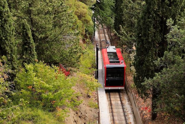Hoge hoek die van een trein op de spoorwegen in het midden van een bos is ontsproten