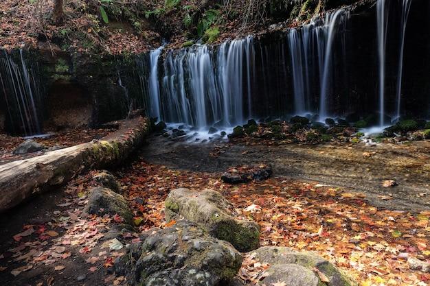 Hoge hoek die van een waterval in een bos in karuizawa is ontsproten. tokio, japan