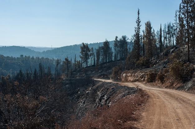 Hoge hoek die van een zanderige weg in de bergen is ontsproten