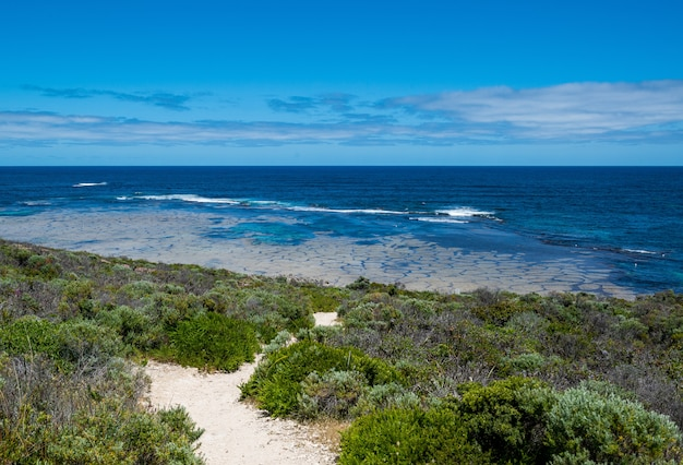 Hoge hoek die van groene installaties op de kust onder de bewolkte hemel is ontsproten