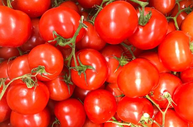 Hoge hoek die van tomatenbos is ontsproten