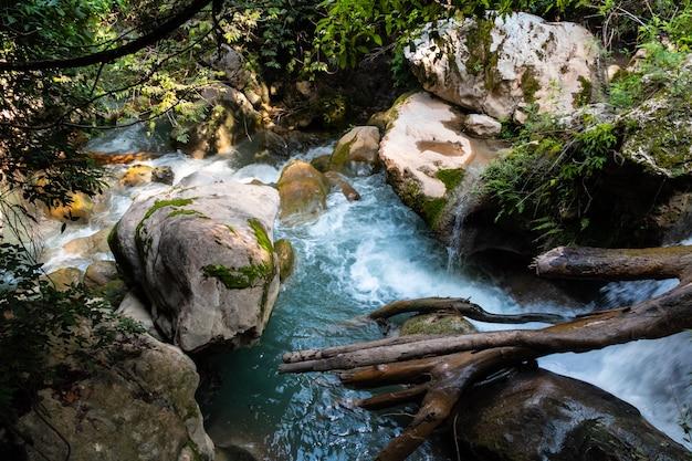 Hoge hoek die van watervallen in het bos is ontsproten