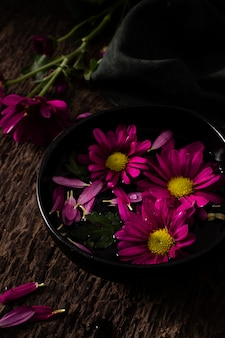 Hoge hoek lentebloemen