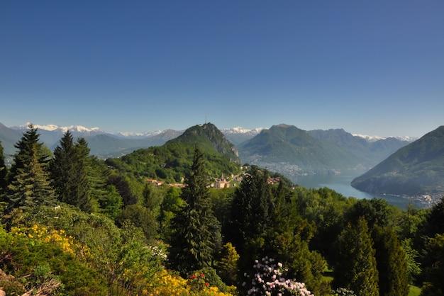 Hoge hoek prachtig uitzicht op een bos in de bergen met een alpine meer