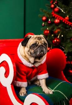 Hoge hoek santa sleight met gesneden santa hond