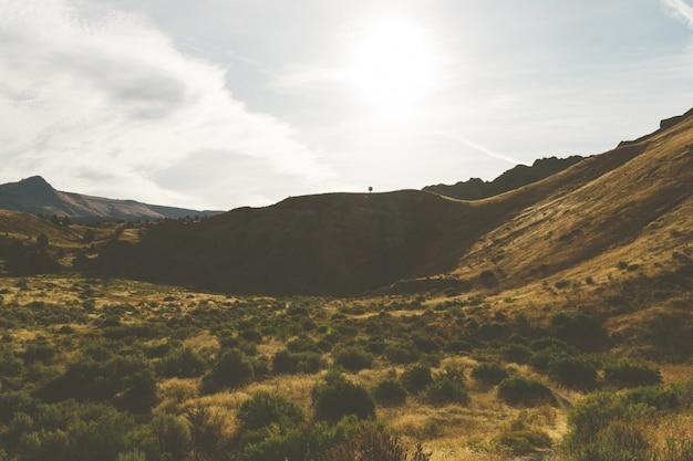 Hoge hoek schot van de heuvels met droog gras in een verlaten gebied onder de grijze lucht