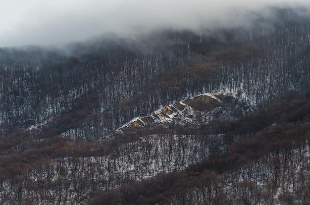 Hoge hoek shot van het bos in de heuvels bedekt met sneeuw en de mist hierboven