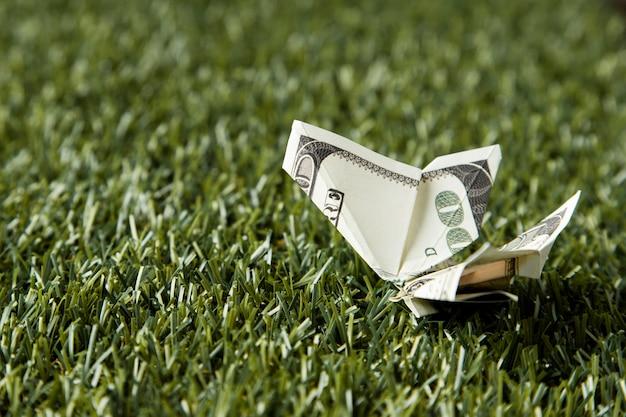 Hoge hoek van bankbiljetten en munten in gras met kopie ruimte