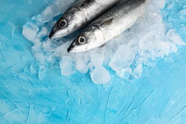 Hoge hoek van een paar vissen met ijs