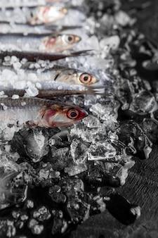 Hoge hoek van kleine vissen op ijs