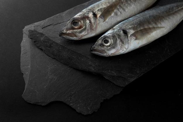 Hoge hoek van twee vissen op leisteen