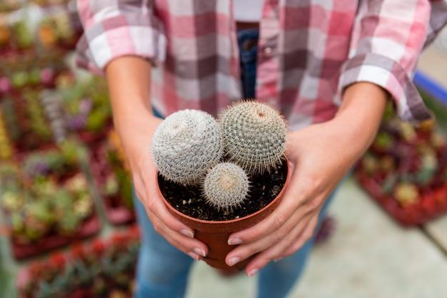 Hoge hoek vrouw met pot met cactus