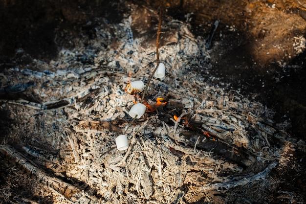 Hoge hoek vuur koken marshmellows