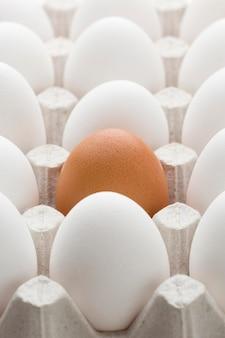 Hoge hoekbekisting met eieren