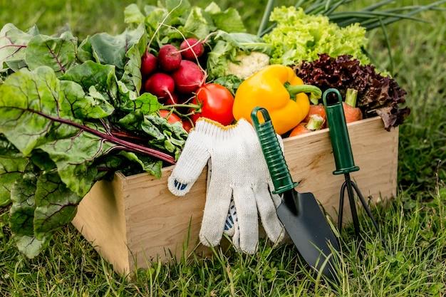 Hoge hoekmand met groenten