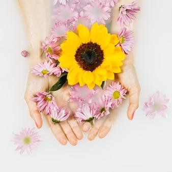 Hoge hoekmening van gele en roze bloemen in duidelijke stroomversnelling