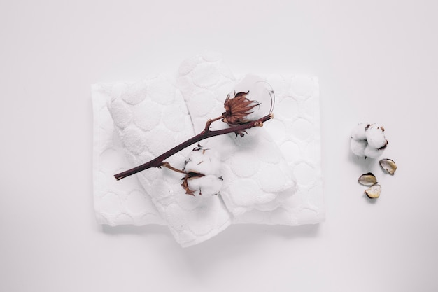 Hoge hoekmening van katoenen takje en servetten op witte oppervlakte